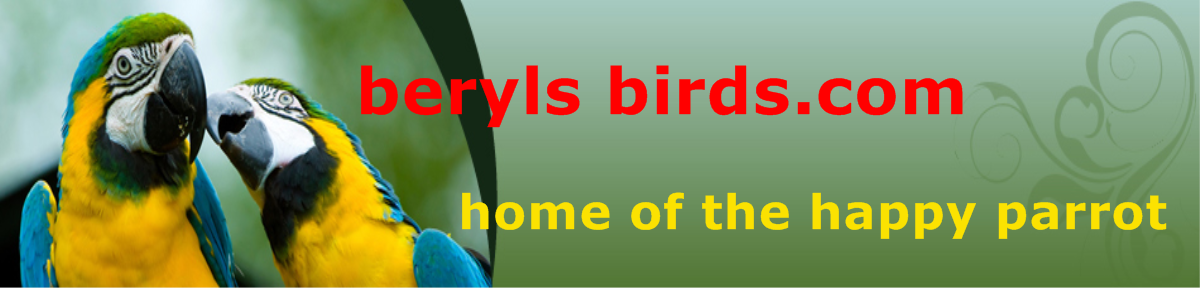 berylsbirds.com