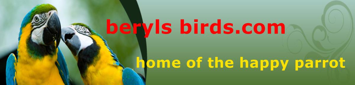 berylsbirds.com